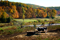 Farm Country Litchfield County